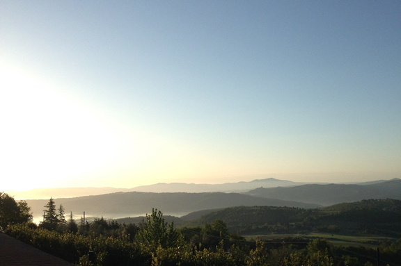 dawn in montalcino
