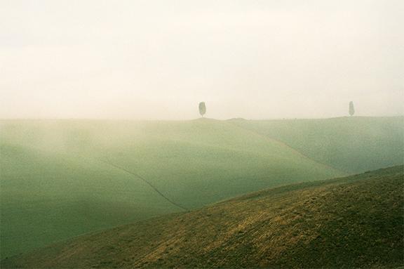 chasing fog montalcino