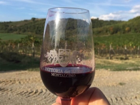Harvest update from Stefano: Tasting the first wine fromMaremma