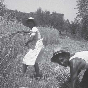 Celebrate the harvest at Fattoria dei Barbi with an old-time feast (July8-9)