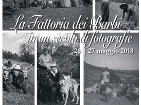 Barbi debuts private collection of vintage photography for this year's Cantine Aperte (Open Cellars)