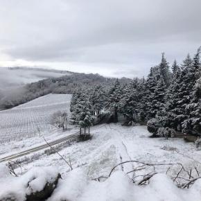 The magic of Montalcino inwinter…