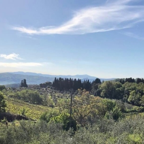 Extreme weather in Montalcino: A couple of notes and photos fromStefano