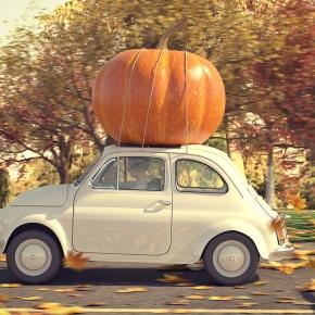 Sangiovese, the ultimate Thanksgivinggrape…